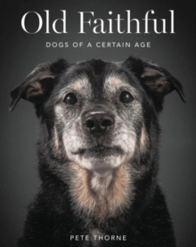 Old Faithful : Dogs of a Certain Age, Hardback Book