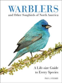 Warblers and Other Songbirds of North America : A Life-size Guide to Every Species, Hardback Book