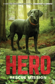 Hero: Rescue Mission, Paperback Book