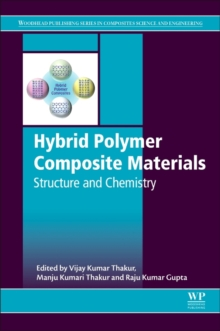 Hybrid Polymer Composite Materials: Structure and Chemistry, Hardback Book