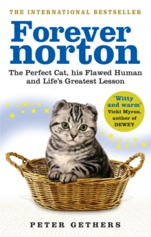 Forever Norton : The Perfect Cat, his Flawed Human and Life's Greatest Lesson, Paperback / softback Book