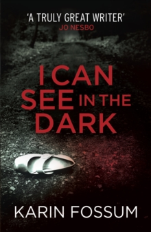 I Can See in the Dark, Paperback / softback Book