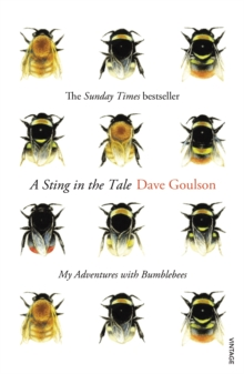 A Sting in the Tale : My Adventures with Bumblebees, Paperback / softback Book