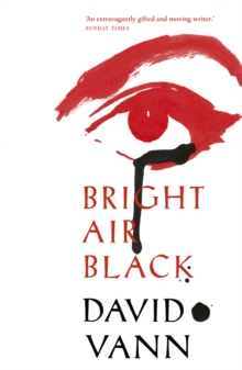 Bright Air Black, Paperback / softback Book