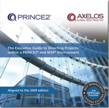 The Executive Guide to Directing Projects : Within a PRINCE2 and MSP Environment, Paperback Book
