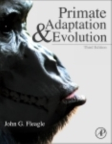 Primate Adaptation and Evolution, Hardback Book