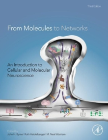 From Molecules to Networks : An Introduction to Cellular and Molecular Neuroscience, Hardback Book