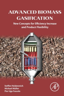 Advanced Biomass Gasification : New Concepts for Efficiency Increase and Product Flexibility, Paperback Book