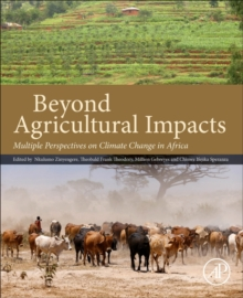 Beyond Agricultural Impacts : Multiple Perspectives on Climate Change and Agriculture in Africa, Paperback Book