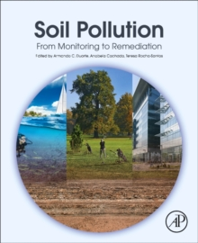 Soil Pollution : From Monitoring to Remediation, Paperback Book