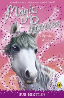 Magic Ponies: A Special Wish, Paperback / softback Book