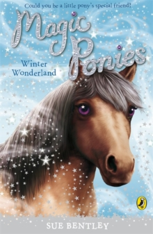 Magic Ponies: Winter Wonderland, Paperback / softback Book