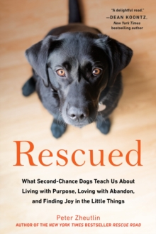 Rescued : What Second-Chance Dogs Teach Us About Living with Purpose, Loving with Abandon, and Finding Joy in the Little Things, Paperback / softback Book