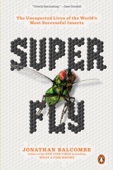 Super Fly : The Unexpected Lives of the World's Most Successful Insects, Paperback / softback Book