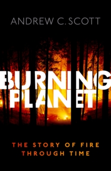 Burning Planet : The Story of Fire Through Time, EPUB eBook