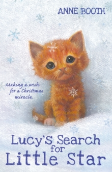 Lucy's Search for Little Star, Paperback / softback Book
