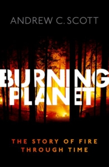 Burning Planet : The Story of Fire Through Time, Hardback Book