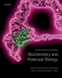 Biochemistry and Molecular Biology, Paperback / softback Book