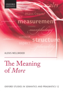 The Meaning of More, Paperback / softback Book