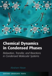 Chemical Dynamics in Condensed Phases : Relaxation, Transfer, and Reactions in Condensed Molecular Systems, Paperback Book