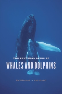 The Cultural Lives of Whales and Dolphins, Paperback / softback Book
