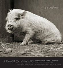 Allowed to Grow Old : Portraits of Elderly Animals from Farm Sanctuaries, Hardback Book