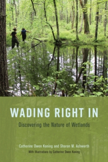 Wading Right in : Discovering the Nature of Wetlands, Paperback / softback Book