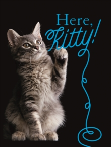 Here, Kitty!, Paperback / softback Book