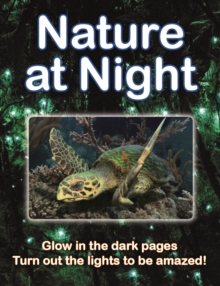 Nature at Night, Hardback Book