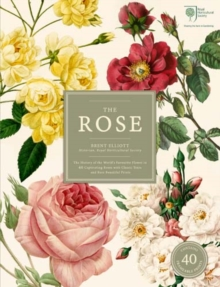 The Rose : The History of the World's Favourite Flower in 40 Roses, Multiple copy pack Book