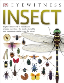 Insect : Explore the world of insects and creepy-crawlies - the most adaptable and numerous creatures on the planet, Paperback Book