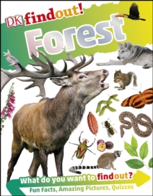 DKfindout! Forest, PDF eBook