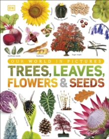 Trees, Leaves, Flowers & Seeds : A visual encyclopedia of the plant kingdom, Hardback Book