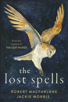 The Lost Spells, Hardback Book
