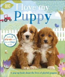 I Love My Puppy, Board book Book
