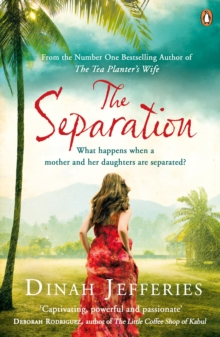 The Separation, Paperback Book