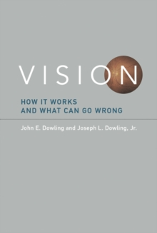 Vision : How It Works and What Can Go Wrong, Hardback Book