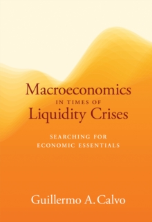 Macroeconomics in Times of Liquidity Crises : Searching for Economic Essentials, Hardback Book