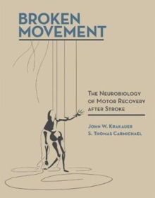Broken Movement : The Neurobiology of Motor Recovery after Stroke, Hardback Book