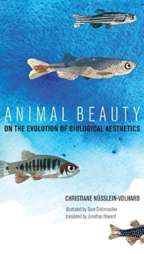 Animal Beauty : On the Evolution of Biological Aesthetics, Hardback Book