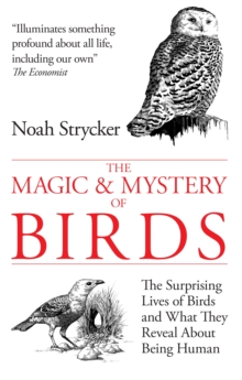 The Magic & Mystery of Birds : The Surprising Lives of Birds and What They Reveal About Being Human, Hardback Book