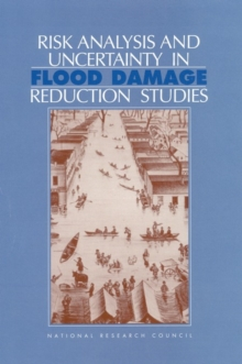 Risk Analysis and Uncertainty in Flood Damage Reduction Studies, EPUB eBook