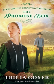 The Promise Box, Paperback Book