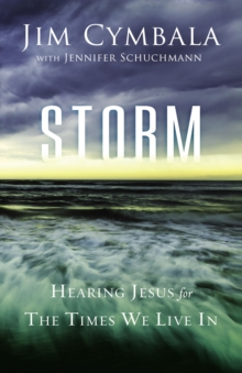 Storm : Hearing Jesus for the Times We Live in, Paperback Book