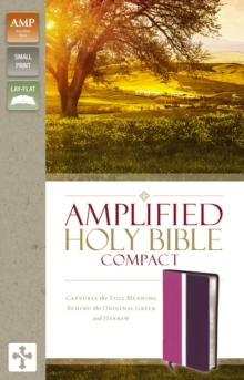Amplified Holy Bible, Compact, Leathersoft, Pink/Purple : Captures the Full Meaning Behind the Original Greek and Hebrew, Leather / fine binding Book