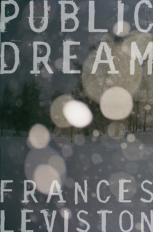 Public Dream, Paperback Book