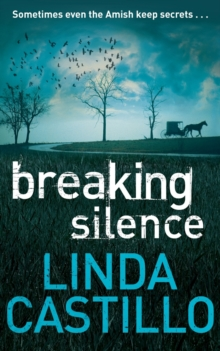 Breaking Silence, Paperback Book