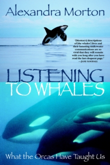 Listening To Whales, Paperback / softback Book
