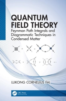 Quantum Field Theory : Feynman Path Integrals and Diagrammatic Techniques in Condensed Matter, Hardback Book