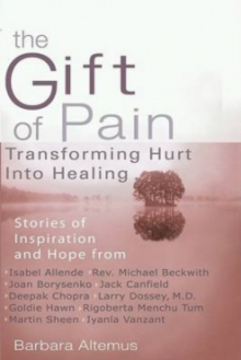 Gift of Pain : Transforming Hurt into Healing, Paperback Book